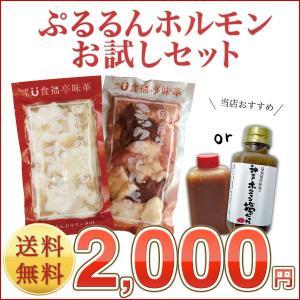 【送料無料】『人気ホルモン食べ比べセット』お一人様2セット限り (焼肉 焼き肉 バーベキュ-)小腸 コプチャン