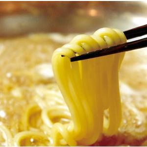 ちゃんぽん麺200g shokufukutei