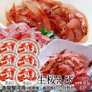 さくらえび 漬け 生桜えびのづけ [40g×6P] 静岡県 由比港 駿河湾産 桜えびの舞台