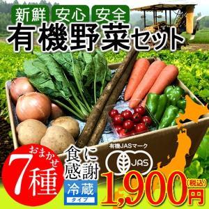 日本の有機野菜セット 旬のおまかせ7種類 全国ご当地生産者のこだわり有機栽培 通販 人気 お中元 ギフト