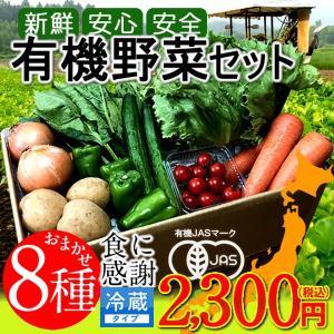 日本の有機野菜セット 旬のおまかせ8種類 全国ご当地生産者のこだわり有機栽培 通販 人気 お中元 ギフト