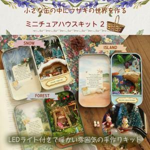 手作り ミニチュアハウスキット2 ドールハウス 缶ケース DIY おもちゃ ラビット 人形の家 LE...
