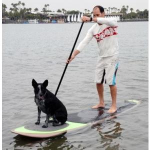 スタンドアップパドルボードBetter Surf...than Sorry Paddle with your dog Pup Deck SUP Traction Pad for Dogs Stand Up P|shop-angelica