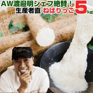 awキッチン スゴベジで注目! 渡邊明シェフ 絶賛 ねばりっこ 3〜5本入り 5kg 長芋 長いも いも 芋 ながいも 鳥取野菜 とろろ 送料無料 shop-daisenbou