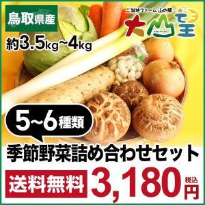 送料無料 鳥取県 季節 野菜 詰合せ 5〜6種類 約3.5kg〜4kg 野菜 詰め合わせ セット 新鮮な旬野菜をお届け