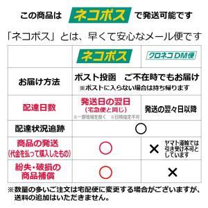 コーヒースプーン 18ー10ステンレス デラックス 日本製 ラッキーウッドメール便可|shop-e-zakkaya|05