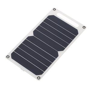 Lixada ソーラー充電器10W ポータブル 超薄 単結晶 シリコン ソーラーパネル 5V USBポート 高効率 キャンプ 乗馬 屋外活動 照明の使 shop-forever