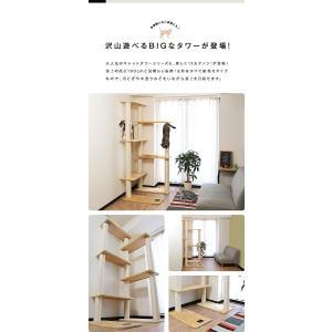 ottostyle.jp キャットタワー PARTHENON190 ベージュ ハンモック2個セット 高さ190cm 紐巻き 天井つっぱり棒な|shop-frontier