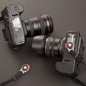 Camera StrapBuddy Set (カメラストラップバディセット)/ diagnl Nin...