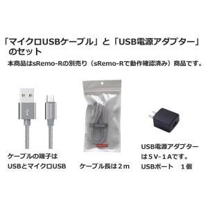 マイクロUSB電源ケーブルとUSB電源アダプターセットsRemo-R付属品(シルバー)
