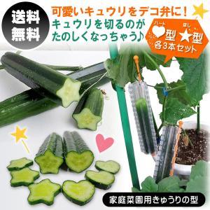 家庭菜園用きゅうりの型 デコきゅう ハート3本と星3本