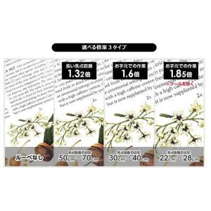 ハズキルーペ コンパクト 1.32倍 1.6倍 1.85倍 (フレームカラー 8色) レンズ2タイプ 正規品4大保証付き|shop-mick|10
