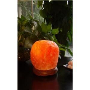 ヒマラヤ岩塩 ソルトランプ KL-09|shop-phoenix