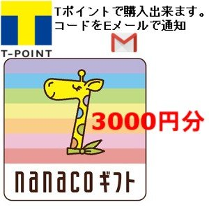 ナナコ ギフト nanaco 3000円分 Tポイント消化用...