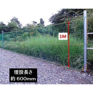 単管杭にネットを張って鳥獣対策!、打込み長さ約600mm・支柱高さ1M、杭と支柱の2パーツ、杭の長さは打込みやすい700mm、鳥獣ネットとしても!|shop-shinkou