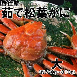 香住産・茹で松葉がに(特大)(約700g)1匹(カニ かに 蟹 ズワイガニ ずわいがに 松葉ガニ 松葉蟹 お取り寄せ 産地直送) shop-syukuin
