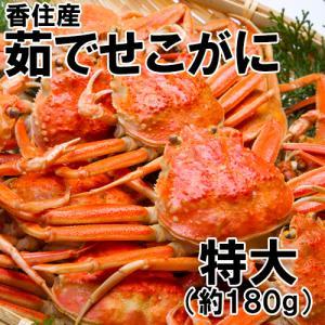 【冷凍】香住産・茹でせこがに(特大)(約180g)(セコガニ/親がに/親ガニ/せいこがに/セイコガニ/こっぺがに/コッペガニ) shop-syukuin