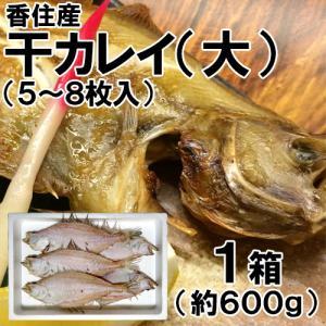 香住産 干カレイ 大 5〜8枚 約600g かれい カレイ 鰈 干物 ひもの お取り寄せ ギフト|shop-syukuin