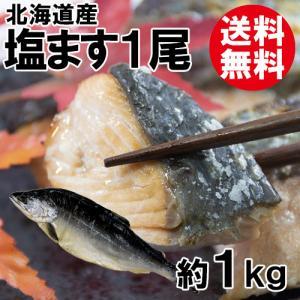 塩ます1尾(約1kg)(北海道産)[送料無料] shop-syukuin