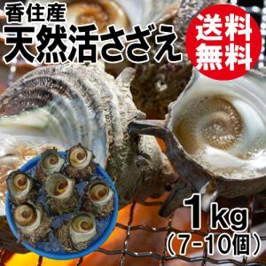 香住産 天然活サザエ 約1kg 7〜10個 送料無料 さざえ バーベキュー BBQ お取り寄せ ギフト 海鮮 shop-syukuin