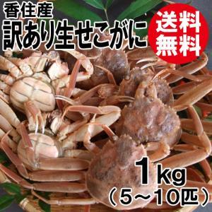 [訳あり]香住産・生せこがに1kg(5〜10匹)[送料無料](セコガニ/親がに/親ガニ/せいこがに/セイコガニ/こっぺがに/コッペガニ) shop-syukuin