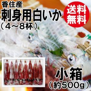 香住産 刺身用 白いか 小箱 4〜8杯 送料無料 剣先イカ ケンサキイカ いか イカ 烏賊|shop-syukuin