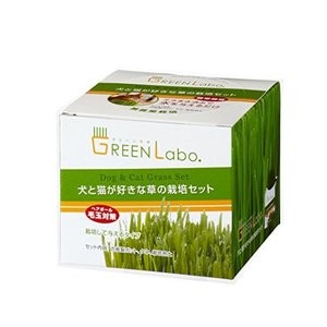 グリーンラボ 犬と猫が好きな草の栽培用セットX4個セット shop-white