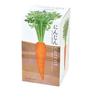 聖新陶芸 おうちで根菜栽培セット にんじん サイズ:約W10.3 D10.3 H18.8 GD-89102 shop-white