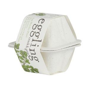 聖新陶芸 エッグリング エコフレンドリー 四つ葉のクローバー EG-49 shop-white