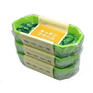 ブロッコリースプラウト栽培容器 大3ヶセット shop-white