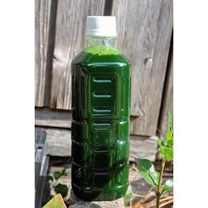 最良のグリーンウォーター【生クロレラ水】500ml|shop-white
