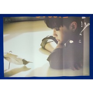 SEVENTEEN Al1 4TH ALBUM POSTER【正式輸入版】 【丸め発送】-HOSHI shop11