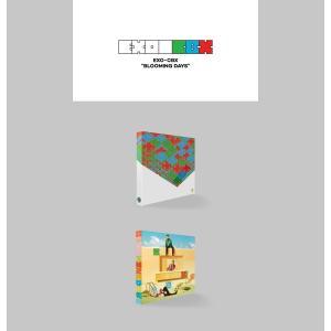 【VER選択】【全曲和訳】EXO CBX BL...の詳細画像1