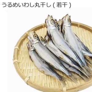 珍味 ギフト (単品) 山下水産 干物 ウルメイワシの丸干(若干)|shopamakusa