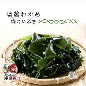 業務用 塩蔵わかめ 磯のいぶき 1kg(1000g) 国産|shopamakusa