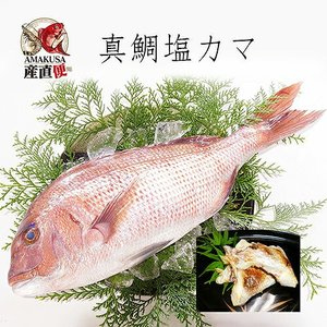 真鯛塩カマ100g×10袋|shopamakusa