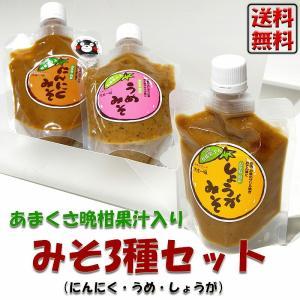 みそ 無添加 みそ3種類セット(にんにくみそ・うめみそ・しょうがみそ) チューブ入り 調味料 セット 味味噌 ディップ ギフト 温野菜 shopamakusa