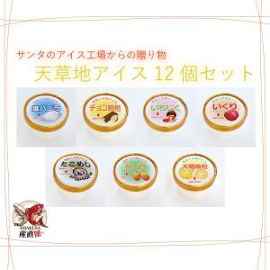 天草 地アイス 選べる12個セット(6種類×2個) shopamakusa