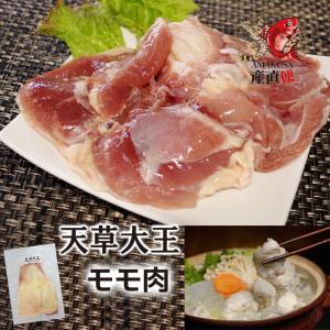 大王モモ肉 天草大王 モモ肉1枚200g以上(個体により異なります)|shopamakusa