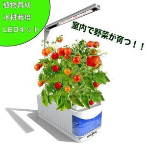 水耕栽培キット スマートガーデン 水耕栽培器 LED照明付   家庭菜園 室内水耕栽培 野菜育成キット 家庭用 植物育成用ライト 読書灯としても活用可能