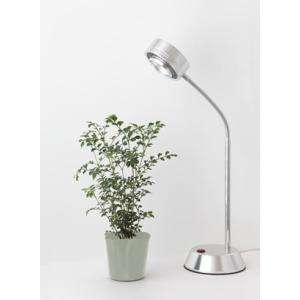 植物育成LED