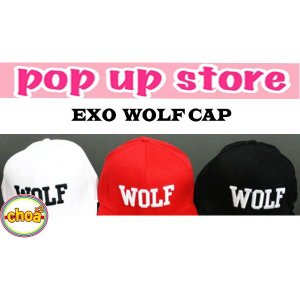EXO エクソ ロッテポップアップストア/Wolf 88 Snapback キャップ 【公式グッズ】|shopchoax2