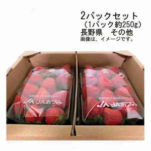 送料無料 夏いちご DX 長野県 その他 2パックセット (1箱 約250g×2パック)