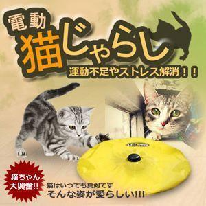 運動不足やストレス解消 ひとりで遊べる電動おもちゃ 組み立ては簡単 すぐに遊べる 電動猫じゃらし ET-CATJ|shopeast