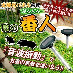 庭の 番人 太陽光パネル モグラ ネズミ 害獣 庭 畑 家庭菜園 ガーデニング 音波 ET-NIWABAN shopeast