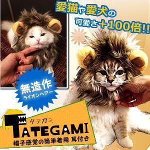ペット用 タテガミ キャップ コスプレ 猫 小型犬 対応 オシャレ 簡単着脱 ライオン アニマル ET-TATEGAMI|shopeast