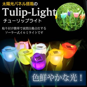 太陽光パネル搭載のチューリップ型 LEDライト 玄関 庭 ガーデンライト エコ ET-TULIP-LIGHT|shopeast