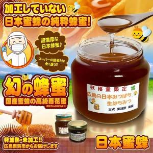 日本 蜜蜂 ニホン ミツバチ 天然 純粋 非加熱 非加工 未加工 はちみつ 広島 国産 天然 50g 80g 120g 300g