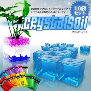 Crystal-Soil 10袋セット 観葉植物 切花 インテリア 8g × 10 おしゃれ 肥料 部屋 リビング 洗面所 SA-CSOIL|shopeast