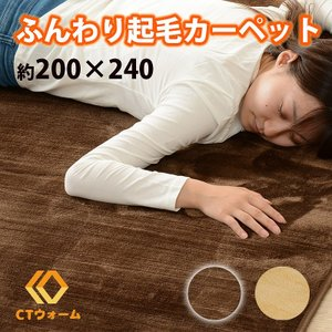 起毛カーペット 200×240cm フランネル さらさら ふわふわ shopfamous